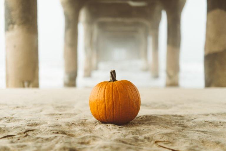 pumpkin on sand below pier