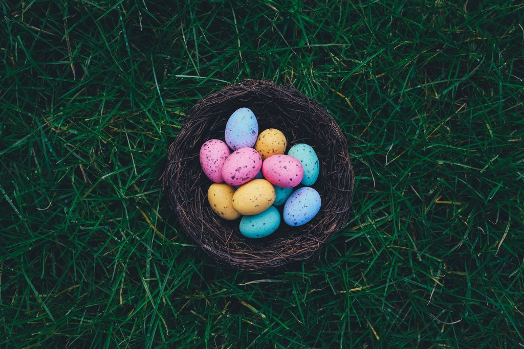 Dyed eggs in a brown nest on grass